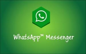 Algumas características do whatsapp